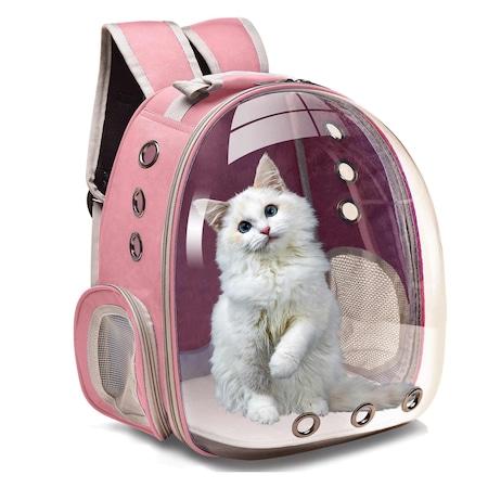 transport pisici ghiozdan ieftin
